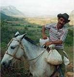 Horse-riding in Vinales