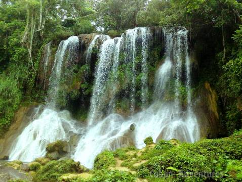 Nicho Waterfall Curtain