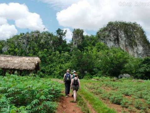 Viñales Walk Tour